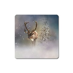 Santa Claus Reindeer In The Snow Square Magnet by gatterwe