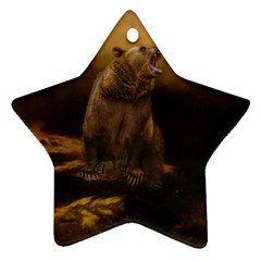 Roaring Grizzly Bear Star Ornament (two Sides) by gatterwe