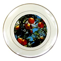 Orange Tree Porcelain Plates by Valentinaart