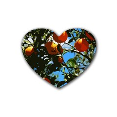 Orange Tree Heart Coaster (4 Pack)  by Valentinaart
