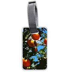 Orange Tree Luggage Tags (one Side)  by Valentinaart