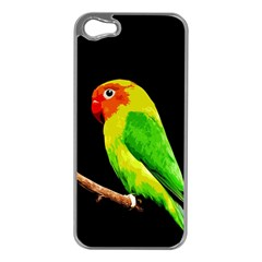 Parrot  Apple Iphone 5 Case (silver)
