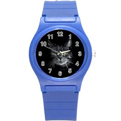 Domestic Cat Round Plastic Sport Watch (s)