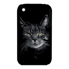Domestic Cat Iphone 3s/3gs by Valentinaart