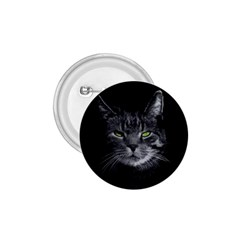 Domestic Cat 1 75  Buttons by Valentinaart