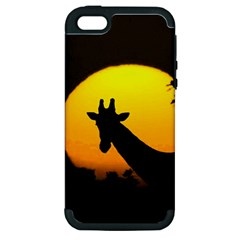 Giraffe  Apple Iphone 5 Hardshell Case (pc+silicone) by Valentinaart