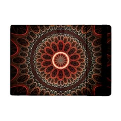 2240 Circles Patterns Backgrounds 3840x2400 Apple Ipad Mini Flip Case by amphoto
