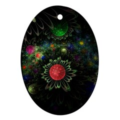 Shapes Circles Flowers  Ornament (oval) by amphoto