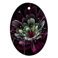 Flower Burst Background  Oval Ornament (Two Sides)