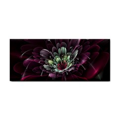 Flower Burst Background  Cosmetic Storage Cases