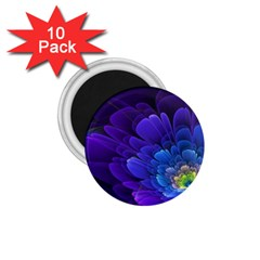 Purple Flower Fractal  1 75  Magnets (10 Pack)  by amphoto
