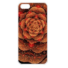 Flower Patterns Petals  Apple Iphone 5 Seamless Case (white)