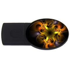 Art Fractal  Usb Flash Drive Oval (2 Gb) by amphoto