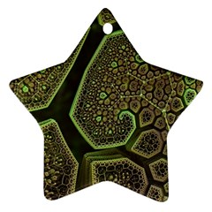 Fractal Weave Shape  Star Ornament (two Sides) by amphoto