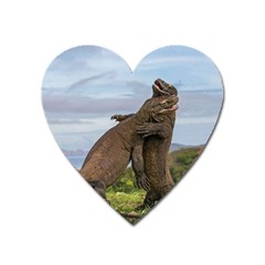 Komodo Dragons Fight Heart Magnet by Nexatart