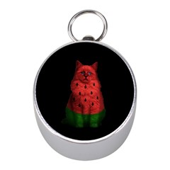Watermelon Cat Mini Silver Compasses
