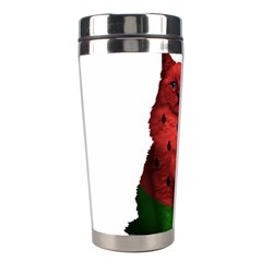 Watermelon Cat Stainless Steel Travel Tumblers