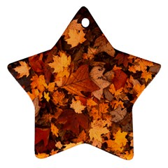 Fall Foliage Autumn Leaves October Star Ornament (two Sides) by Nexatart