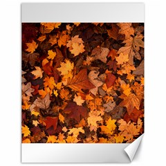 Fall Foliage Autumn Leaves October Canvas 18  X 24