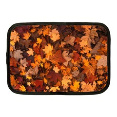 Fall Foliage Autumn Leaves October Netbook Case (medium)