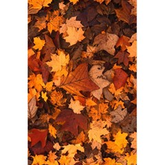 Fall Foliage Autumn Leaves October 5 5  X 8 5  Notebooks by Nexatart