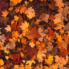 Fall Foliage Autumn Leaves October Magic Photo Cubes by Nexatart