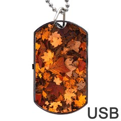 Fall Foliage Autumn Leaves October Dog Tag Usb Flash (two Sides) by Nexatart