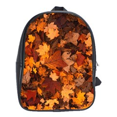 Fall Foliage Autumn Leaves October School Bag (xl) by Nexatart
