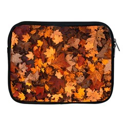 Fall Foliage Autumn Leaves October Apple Ipad 2/3/4 Zipper Cases by Nexatart