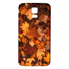 Fall Foliage Autumn Leaves October Samsung Galaxy S5 Back Case (white) by Nexatart