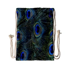 Peacock Feathers Blue Bird Nature Drawstring Bag (small) by Nexatart