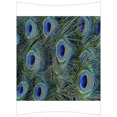 Peacock Feathers Blue Bird Nature Back Support Cushion