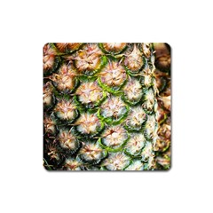 Pineapple Texture Macro Pattern Square Magnet by Nexatart