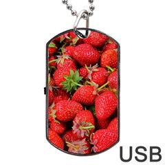 Strawberries Berries Fruit Dog Tag Usb Flash (one Side)