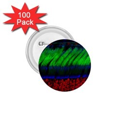 Cells Rainbow 1 75  Buttons (100 Pack)