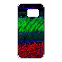 Cells Rainbow Samsung Galaxy S7 White Seamless Case by Mariart