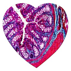Histology Inc Histo Logistics Incorporated Masson s Trichrome Three Colour Staining Jigsaw Puzzle (heart)