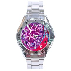 Histology Inc Histo Logistics Incorporated Masson s Trichrome Three Colour Staining Stainless Steel Analogue Watch