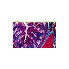 Histology Inc Histo Logistics Incorporated Masson s Trichrome Three Colour Staining Cosmetic Bag (xs) by Mariart
