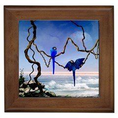 Wonderful Blue  Parrot Looking To The Ocean Framed Tiles by FantasyWorld7