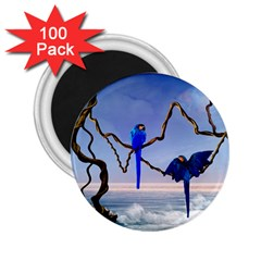 Wonderful Blue  Parrot Looking To The Ocean 2 25  Magnets (100 Pack)  by FantasyWorld7
