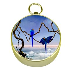 Wonderful Blue  Parrot Looking To The Ocean Gold Compasses by FantasyWorld7
