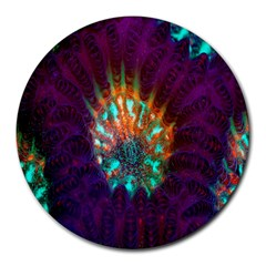 Live Green Brain Goniastrea Underwater Corals Consist Small Round Mousepads by Mariart