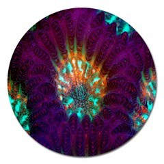 Live Green Brain Goniastrea Underwater Corals Consist Small Magnet 5  (round) by Mariart