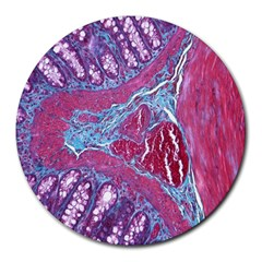 Natural Stone Red Blue Space Explore Medical Illustration Alternative Round Mousepads by Mariart