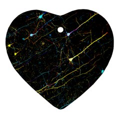 Neurons Light Neon Net Heart Ornament (two Sides) by Mariart