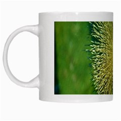Bird Hairstyle Animals Sexy Beauty White Mugs by Mariart