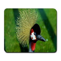 Bird Hairstyle Animals Sexy Beauty Large Mousepads by Mariart