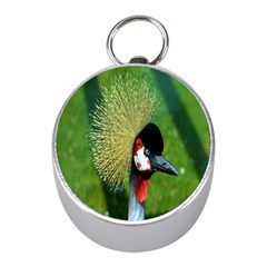 Bird Hairstyle Animals Sexy Beauty Mini Silver Compasses by Mariart