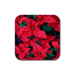 Red Poinsettia Flower Rubber Square Coaster (4 Pack)  by Mariart